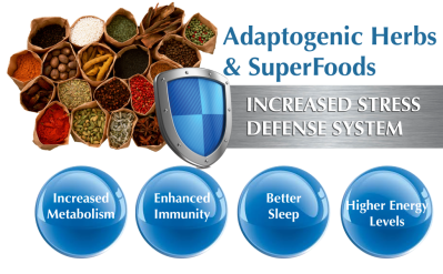 Adaptogenic-Herbs-and-SuperfoodDefense-1024x634