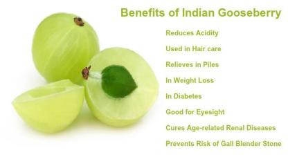 Benefits-of-Indian-Gooseberry