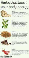 d06383f31c2283da172d18b6ec438779--natural-herbs-natural-health