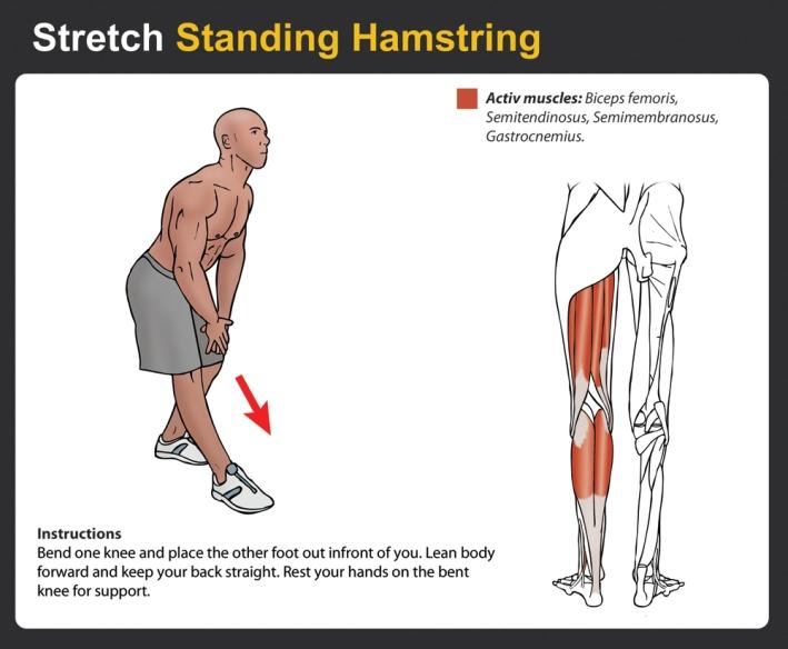 Standing-Hamstring-Stretch (1)